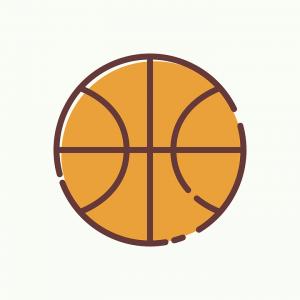 Lion's Basketball – 2017